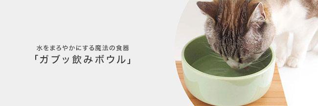 水をまろやかにする魔法の食器「ガブッ飲みボウル」