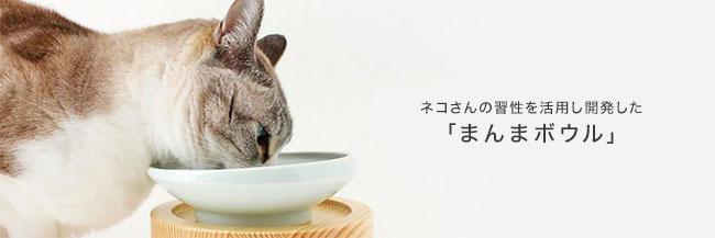 ネコさんの習性を活用し開発した「まんまボウル」