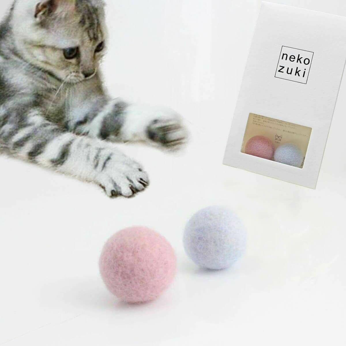 鼻 濡れ いる 猫 て