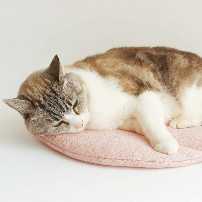 あたたかい 猫用ベッド
